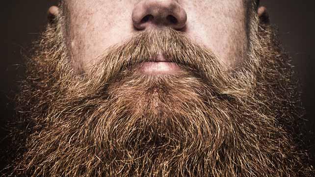 Magnifique barbe